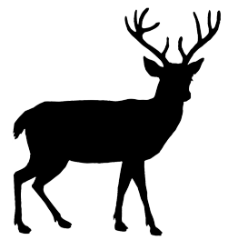 251x264 Animal Silhouette, Silhouette Clip Art