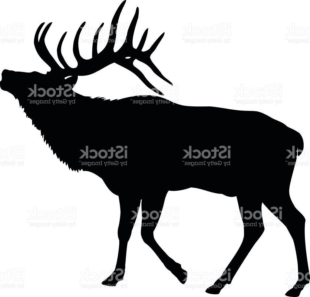 1024x983 Unique Elk Deer Silhouette Vector Design