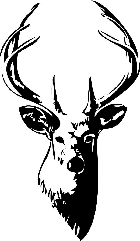 800x1370 White Stag Cliparts 275131