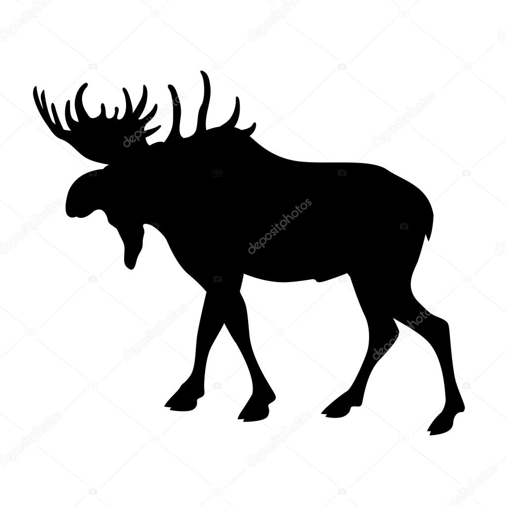 1024x1024 Moose Elk Vector Illustration Black Silhouette Stock Vector