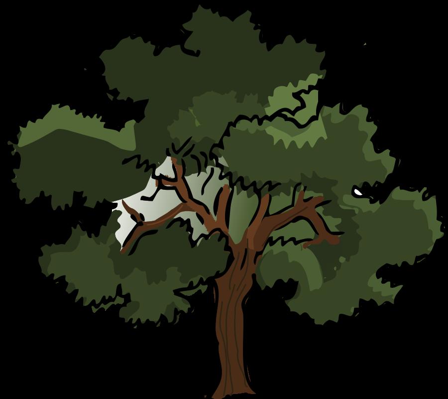 900x801 Nature Clipart Oak Tree