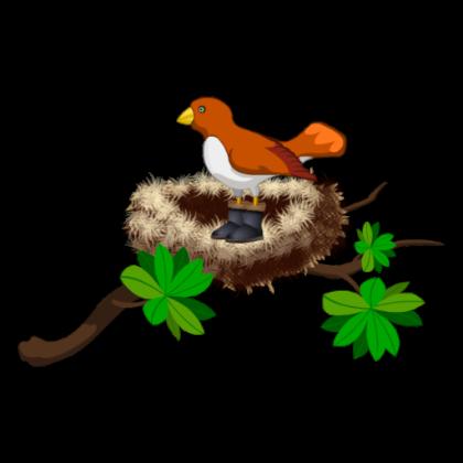 420x420 Bird Nest Clipart Free Image Info