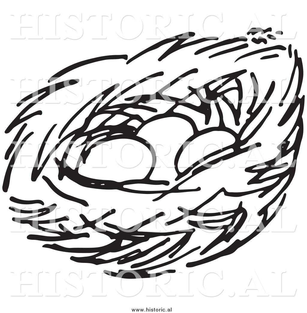 1024x1044 Clipart Of A Bird Nest With Three Eggs