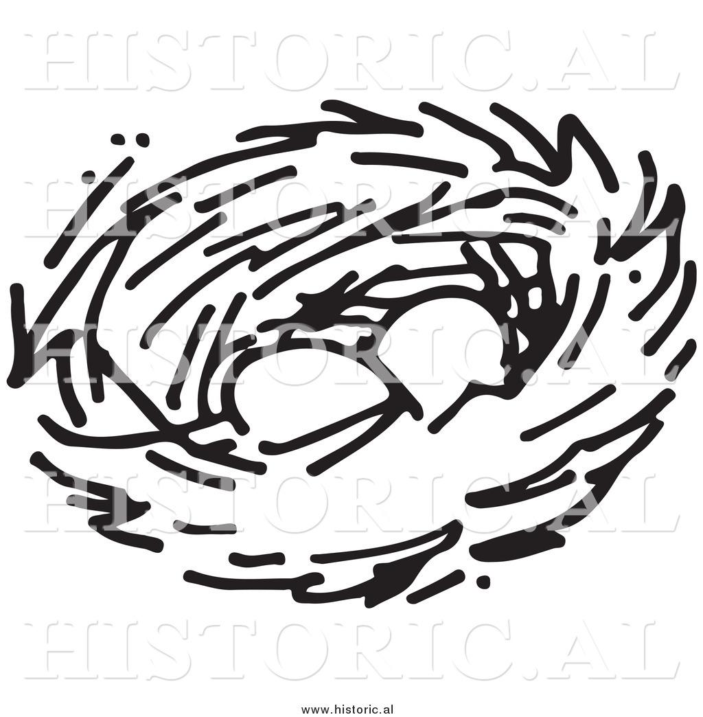 1024x1044 Bird's Nest Clipart Black And White