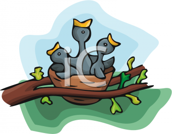 350x273 Bird's Nest Clipart Cartoon