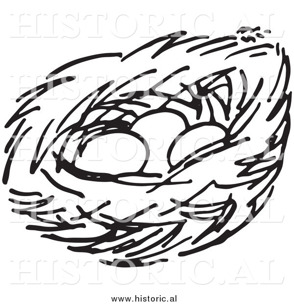 600x620 Empty Bird Nest Clip Art Black And White