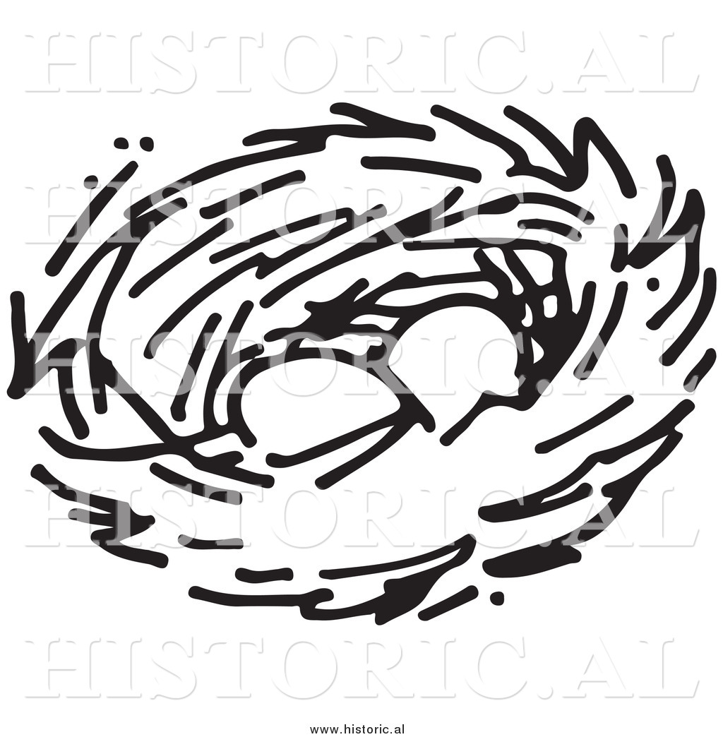 1024x1044 Nest Drawing Clipart