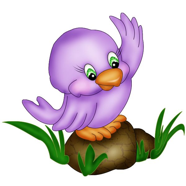 600x600 Best Cartoon Birds Ideas Thomson Shops, Bird