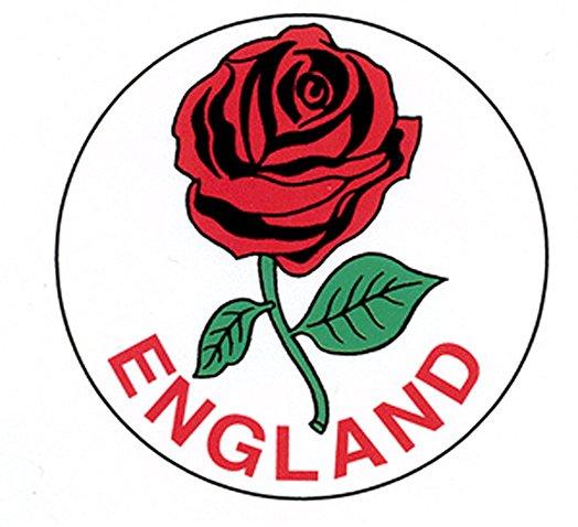 524x478 English Rose Car Bumper Sticker Amazon.co.uk Kitchen Amp Home