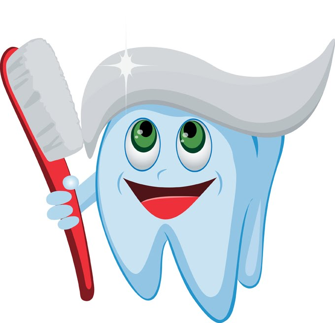 680x655 Tooth Clipart