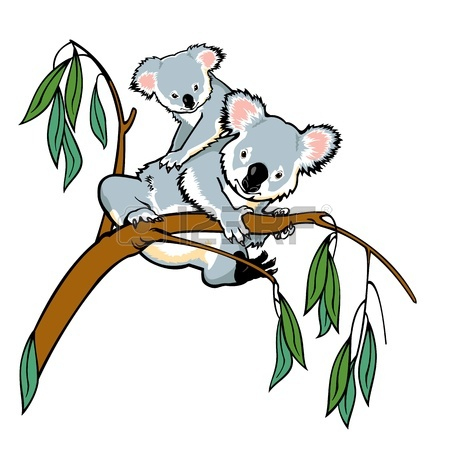 450x450 Koala With Joey Climbing Eucalyptus Tree,picture Isolated