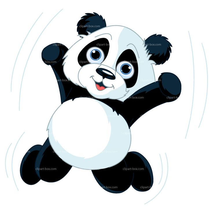 736x736 Panda Clipart Excited