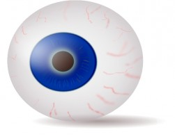 251x200 Eyeball Clip Art Free Vector For Free Download About 8 Free Image