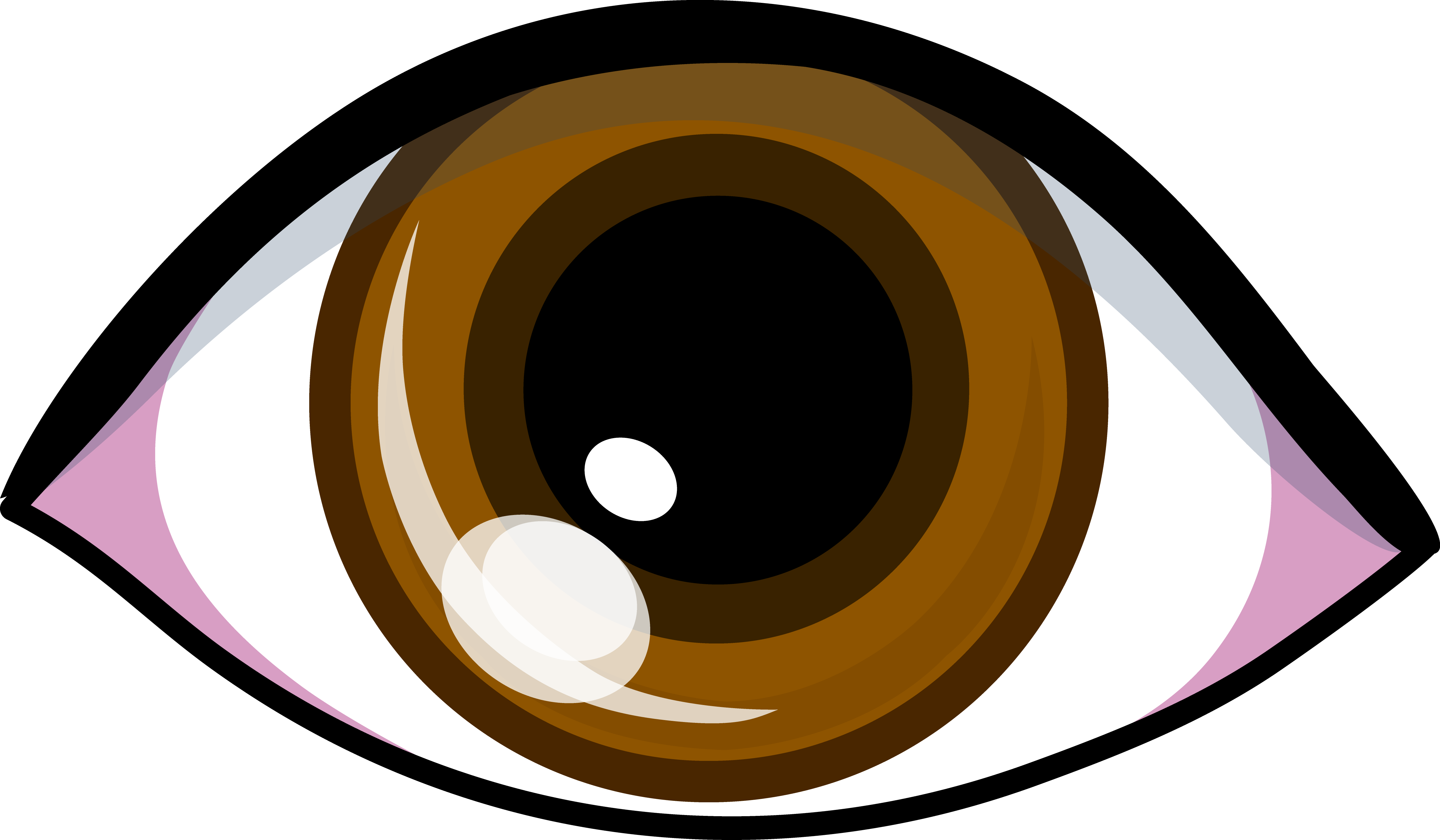 5076x2962 Brown Eye Logo Design