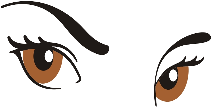 805x412 Female Brown Eye Clip Art