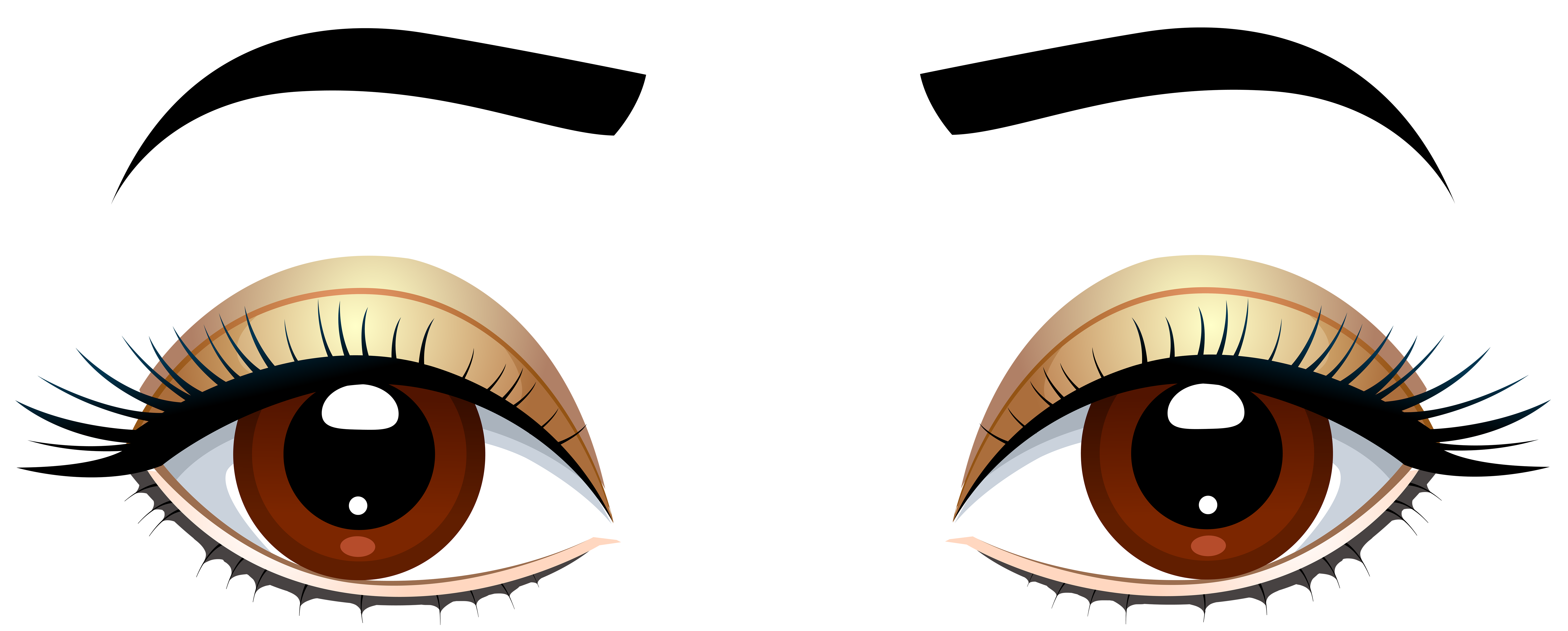 8000x3219 Brown Eyes With Eyebrows Png Clip Art