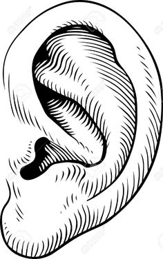 236x376 Human Nose Clipart Black And White