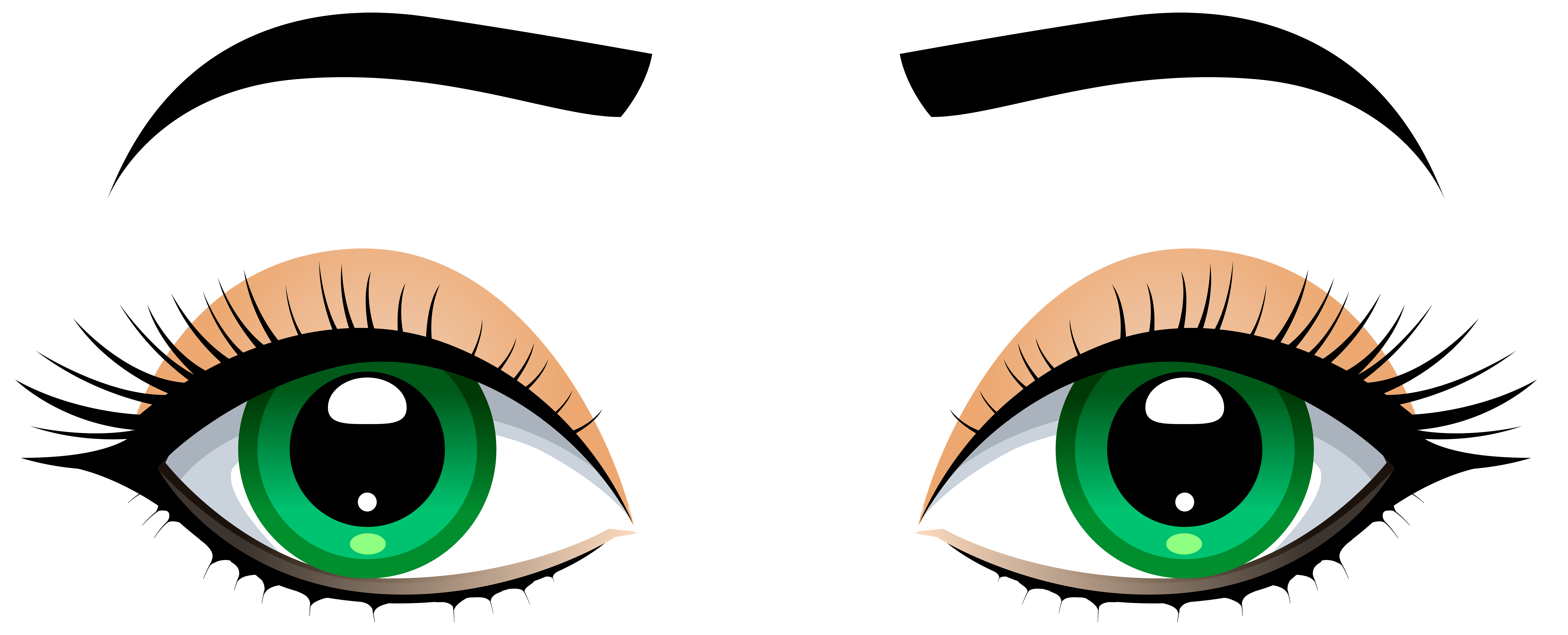 8000x3239 Cabbage Clipart Eye