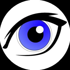 300x300 Eyeball Eye Clip Art Clipart Image