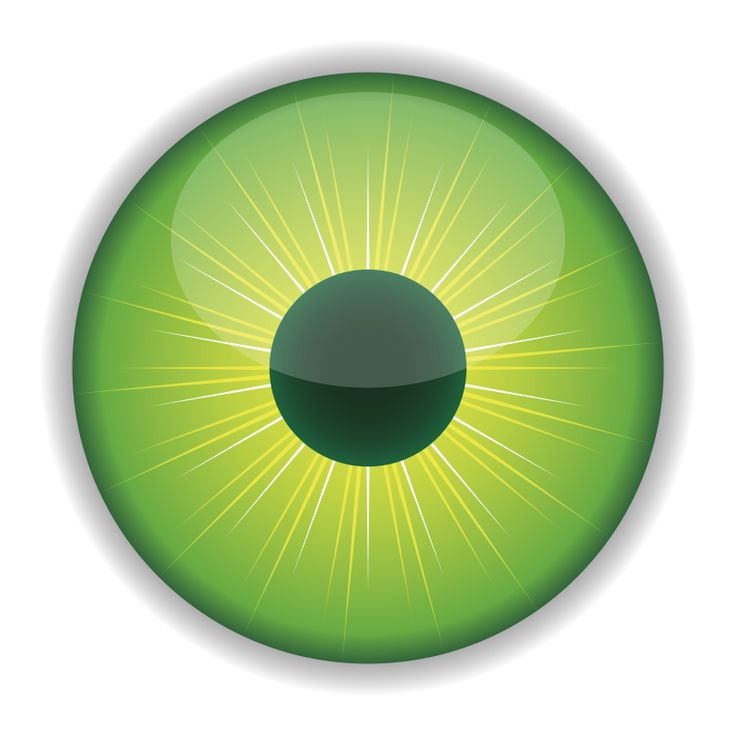 736x736 Eyeball Human Eye Clip Art Free Clipart Images Image