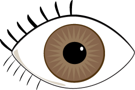 270x180 Brown Eye Clip Art Image Clipart Panda