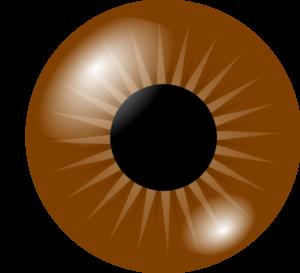 300x273 Brown Eye Clip Art