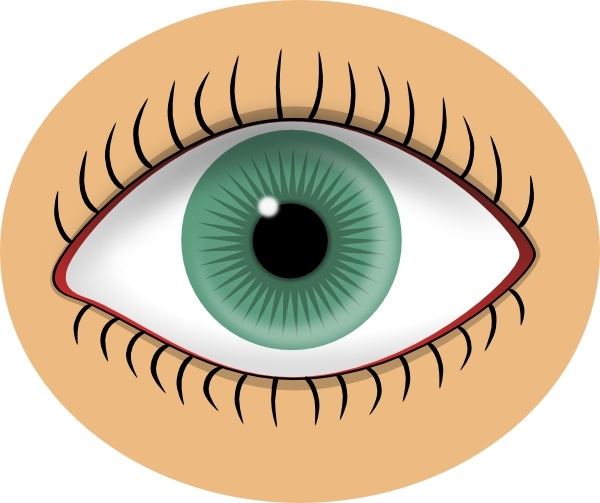 600x503 Eyes Clipart, Suggestions For Eyes Clipart, Download Eyes Clipart