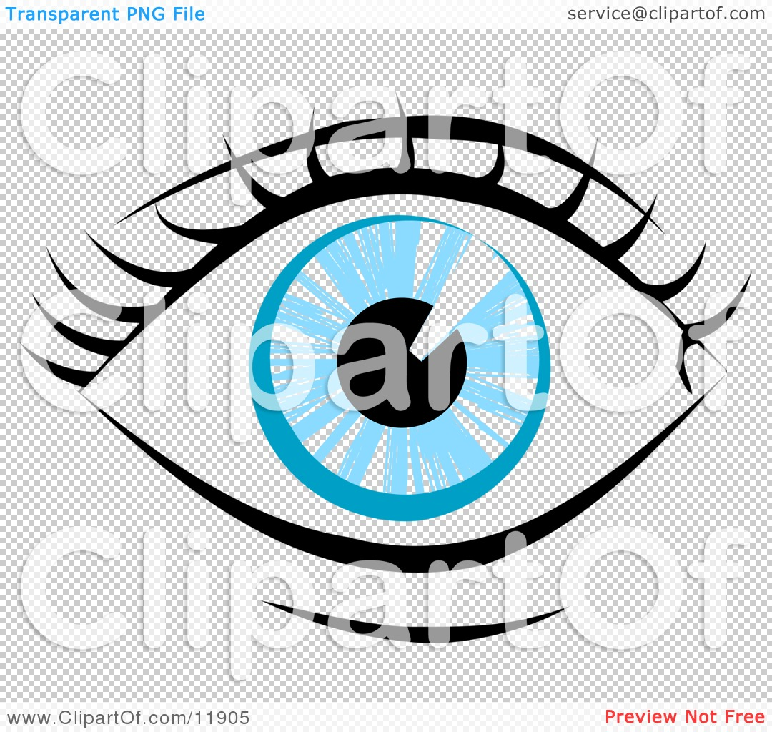 1080x1024 Eyelash Clipart Human Eye Clip Art Blue Human Eye And Eyelashes