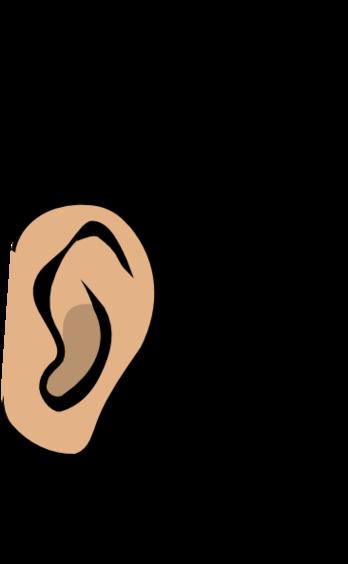 348x564 Ear Clipart