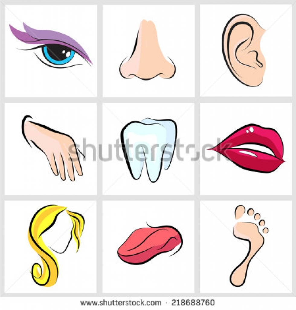 980x1024 Eyes Nose Clipart