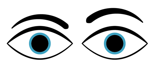 510x238 Eyes Outline Cliparts