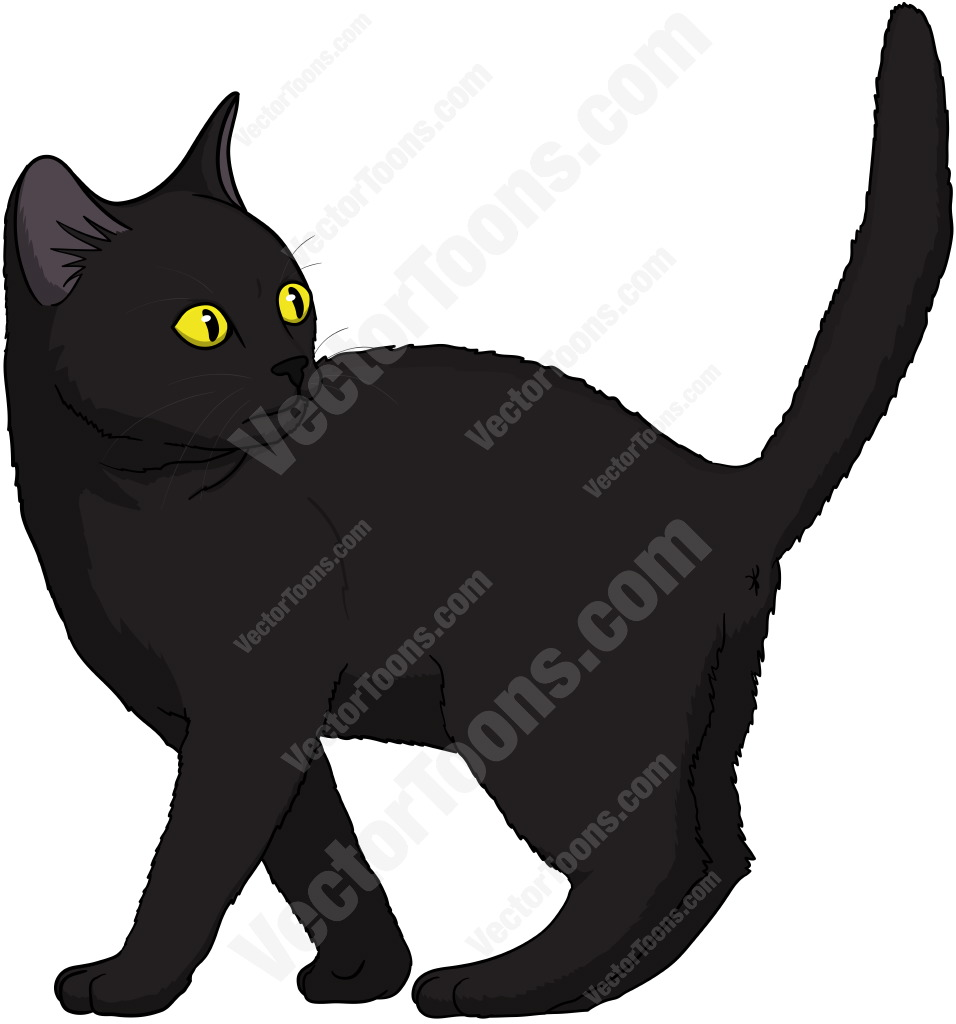 956x1024 Black Kitten With Yellow Eyes Standing With Its Tail Up Looking