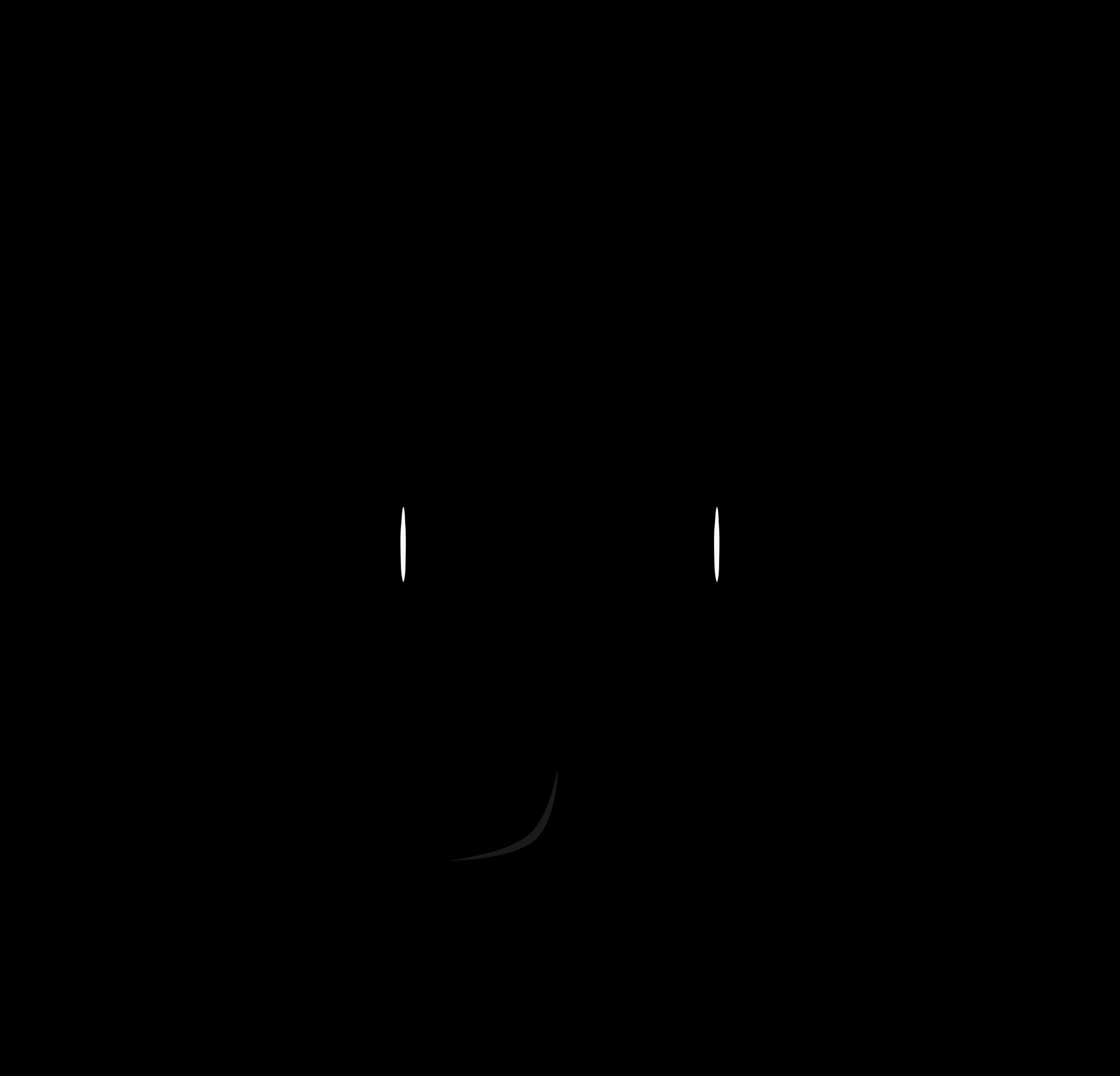 2400x2304 Cat Face Outline Clip Art