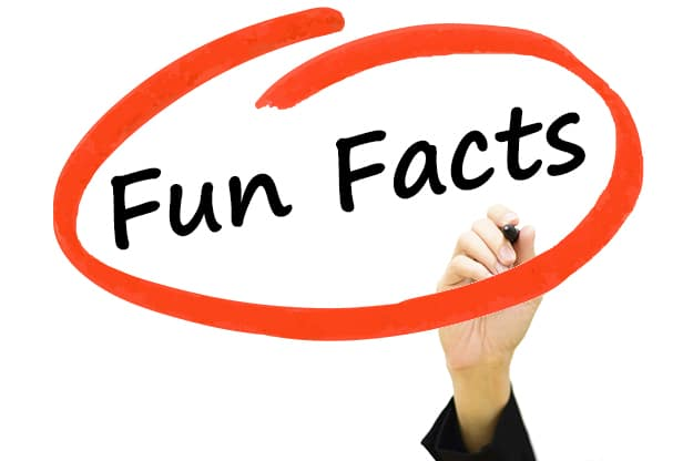 625x416 Fun Clipart Fun Fact