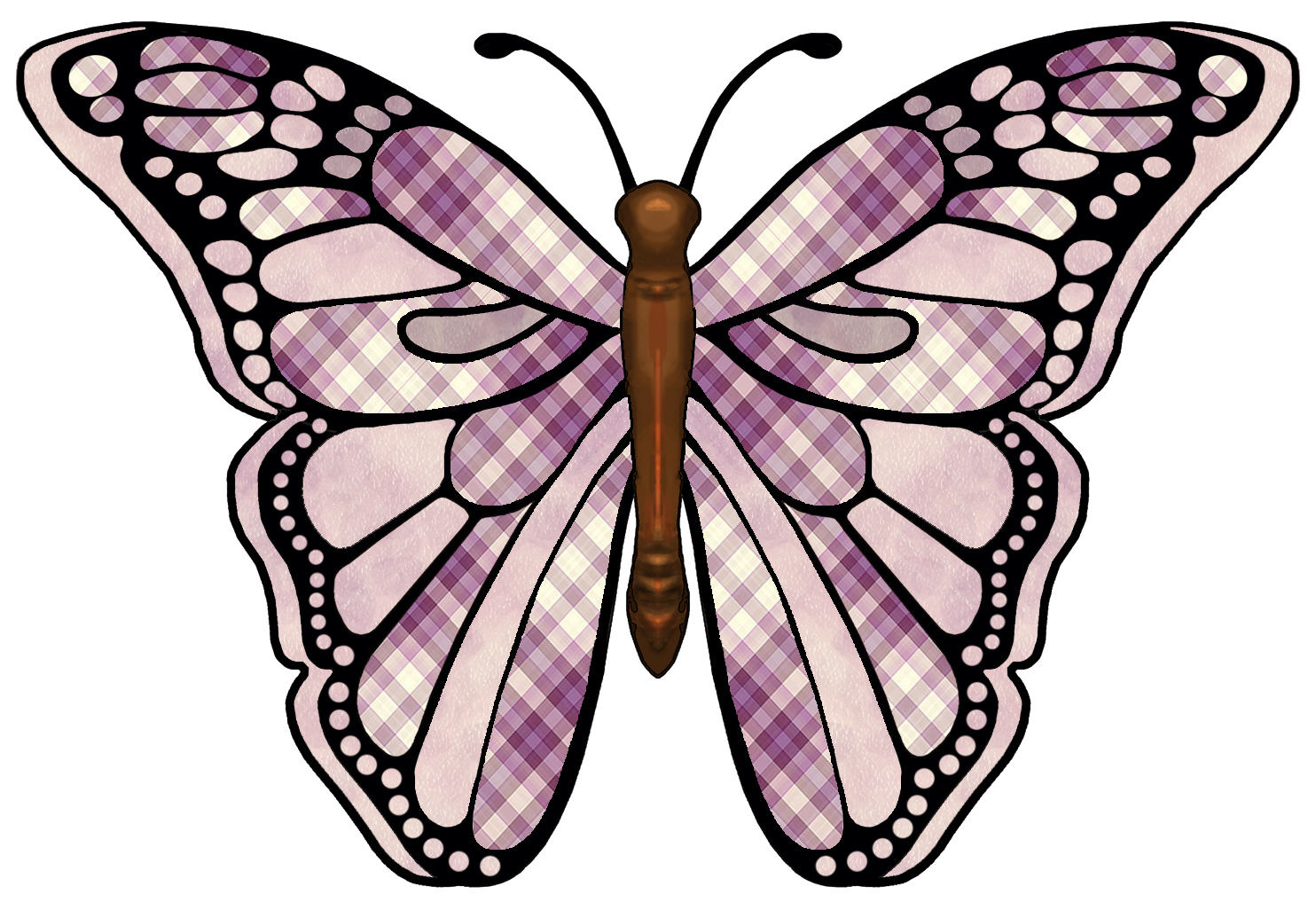 image about Free Printable Fairy Wings known as fairy wing template -
