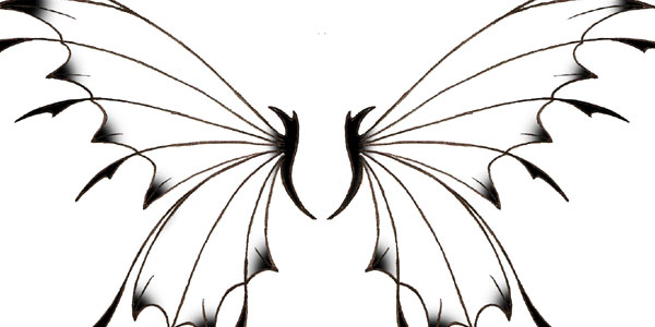 600x300 Fairy Wings Outline Clipart Panda