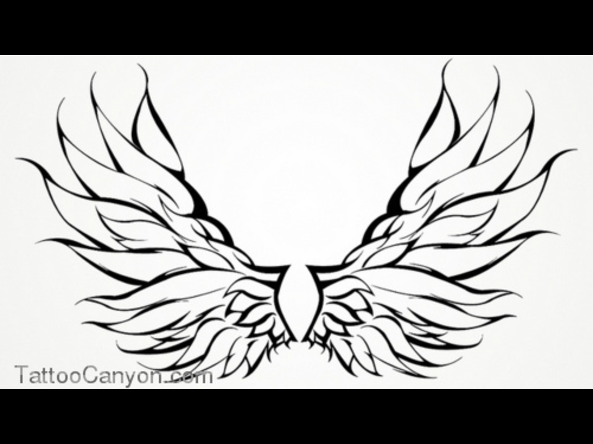 1920x1440 Fairy Wings Outline 10378 Wings Tattoo Angel Tribal Outline Design