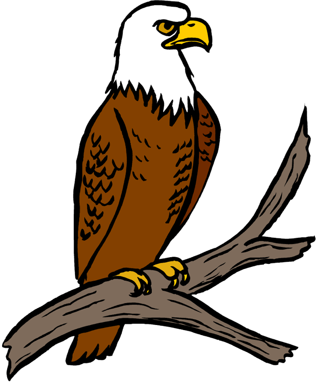 620x750 Clipart Eagle Many Interesting Cliparts