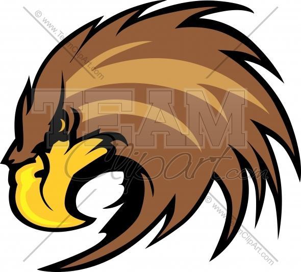 590x533 Falcon Face Clip Art