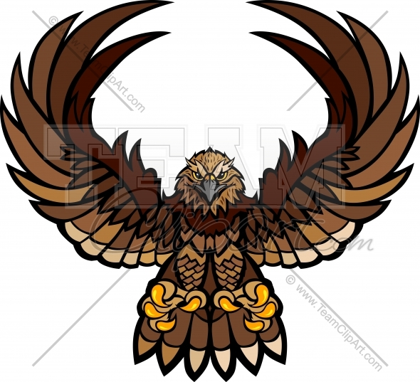 590x537 Falcon Clipart Falcon Wings