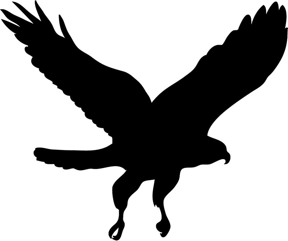 945x791 Top 53 Falcon Clipart