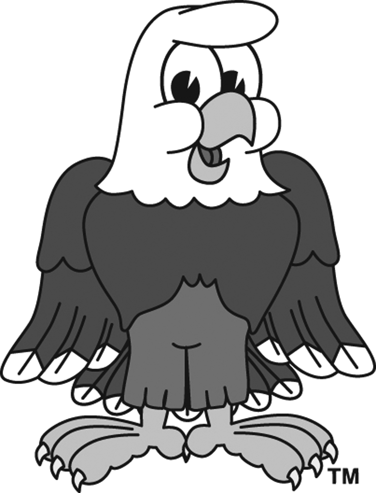 763x1000 Bald Eagle Clipart Falcon