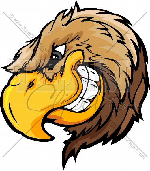 520x590 Cartoon Falcon Clipart Image. Falcon Head Cartoon Mascot Logo Clip Art