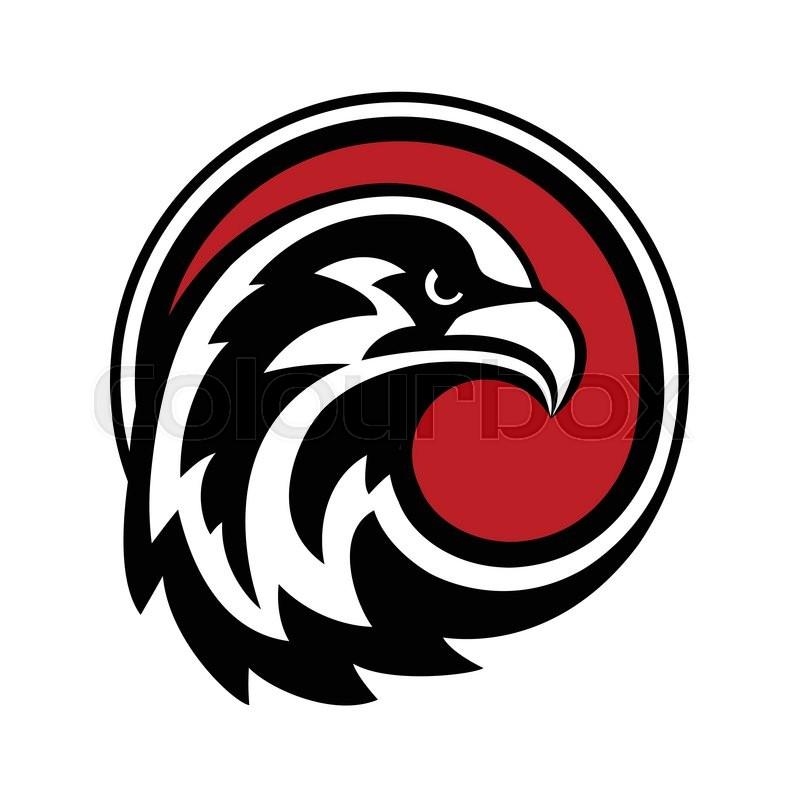 800x800 Eagle Logo Design Vector. Wild Bird Falcon Hawk Head In Circle