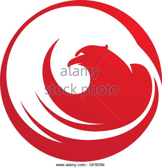 520x540 Falcon Logo Template Stock Photos Amp Falcon Logo Template Stock