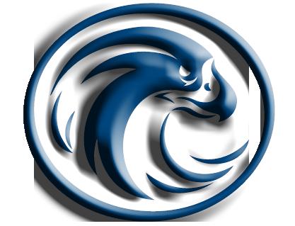 417x319 Logo Falcon 3d