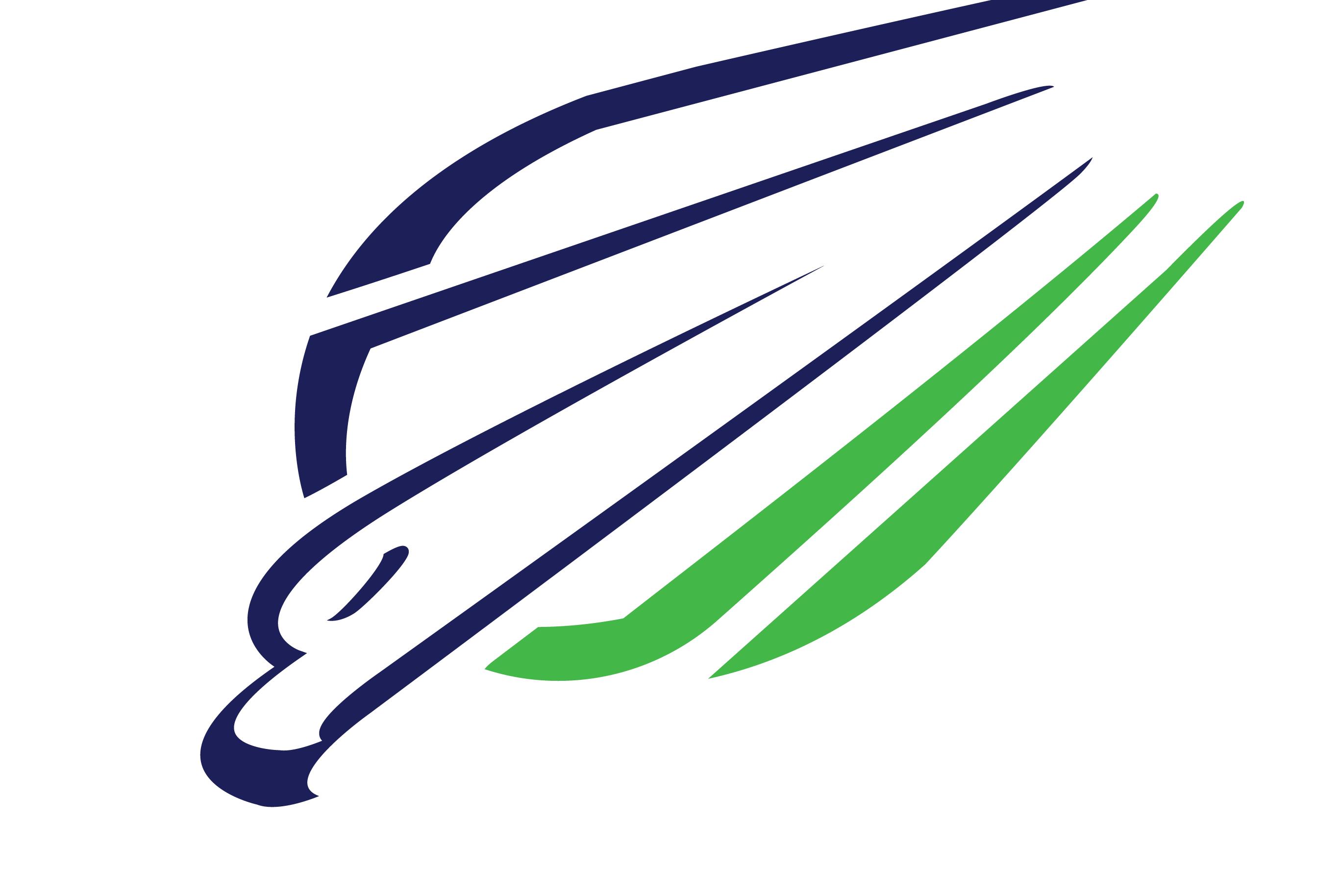 2736x1828 Sold Peregrine Falcon Logo Design Logo Cowboy