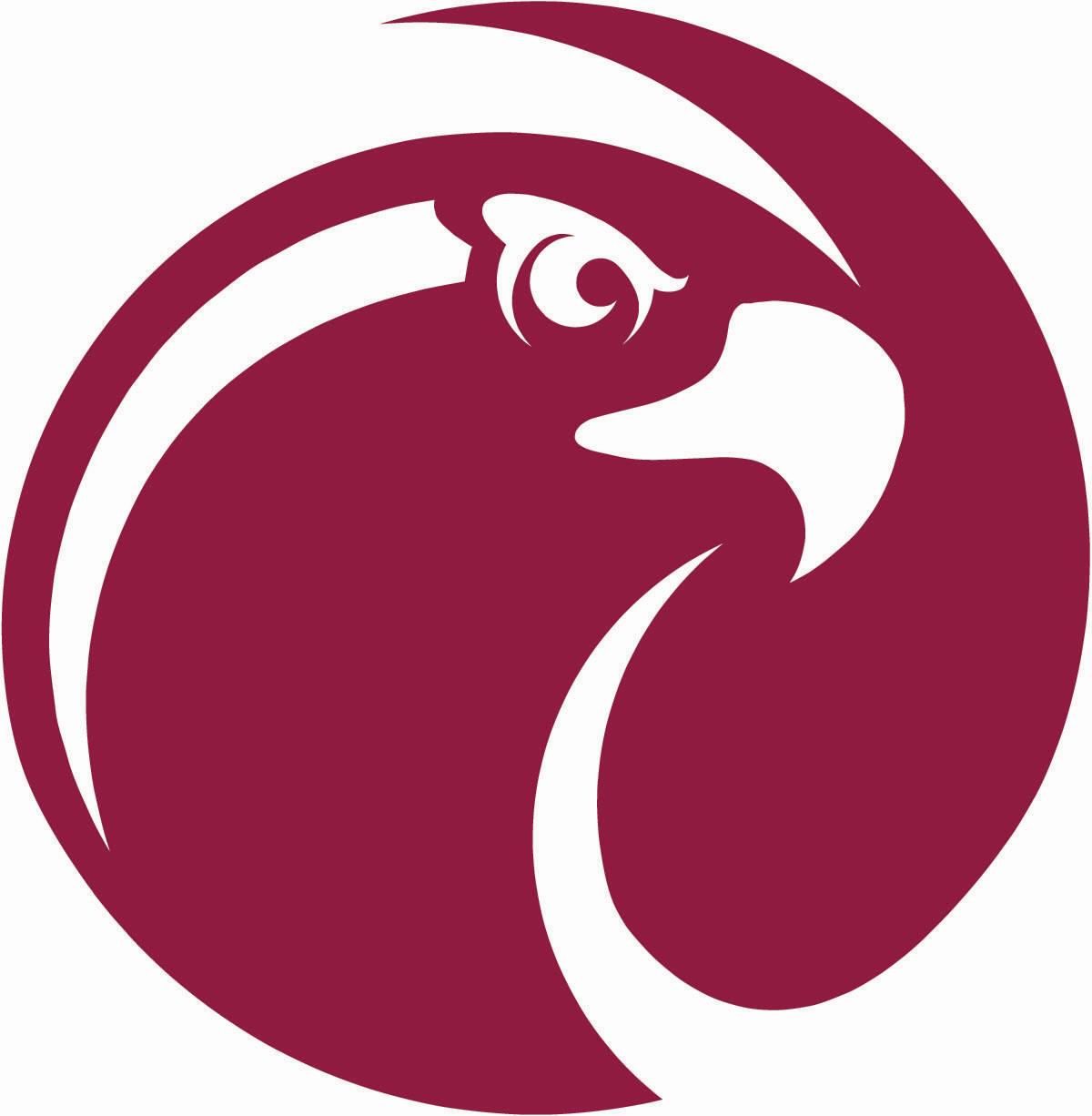1200x1226 Spu Falcon Logo