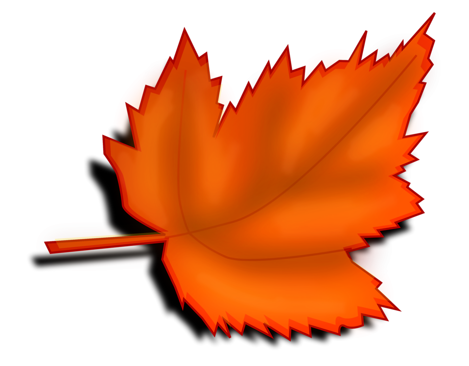 958x748 Leaf Autumn Free Stock Photo Illustration Of An Orange Autumn