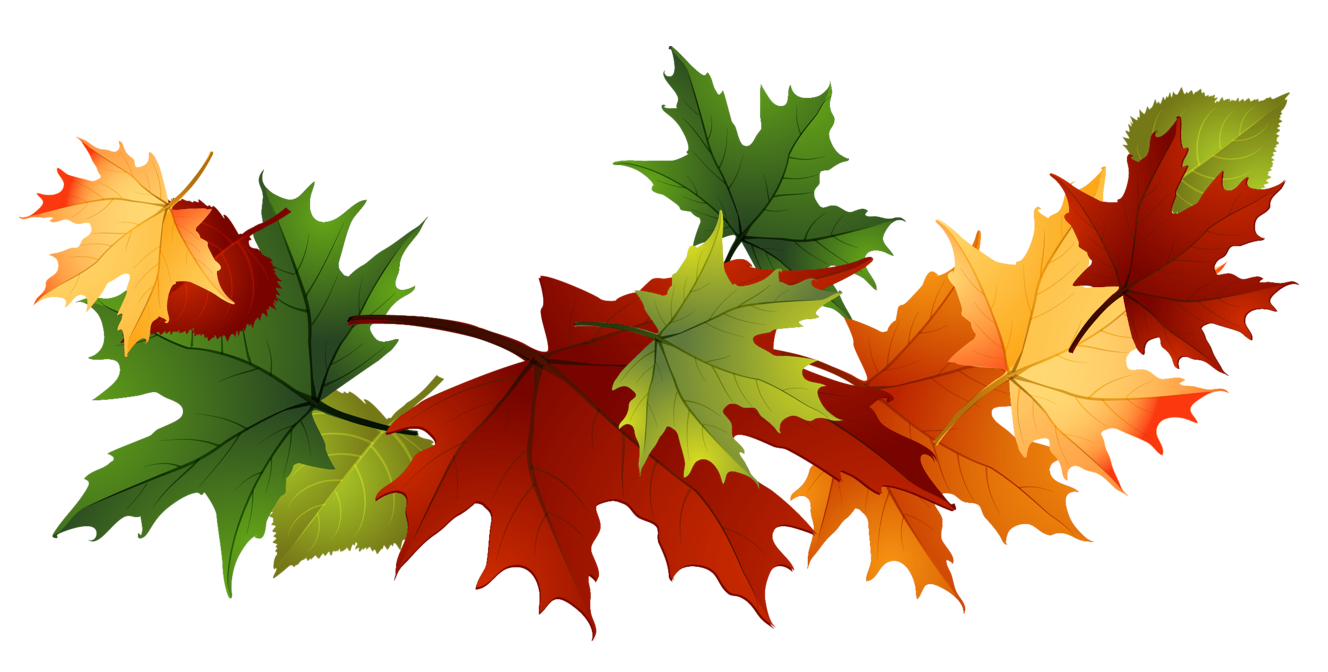1328x672 Leaves Transparent Background Clipart Clipart Kid, Fall Leaf Clip